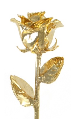 24KT GOLD DIPPED ROSE-GR111-8-B product image