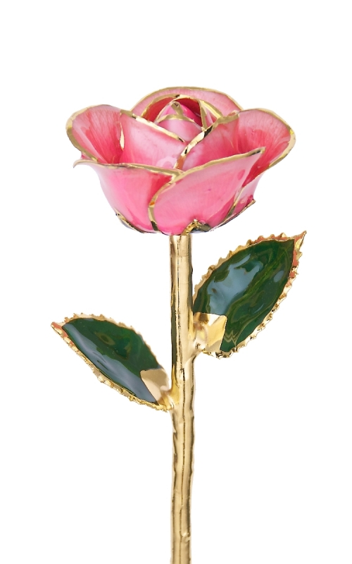24KT GOLD DIPPED PINK ROSE-CGR12-B product image
